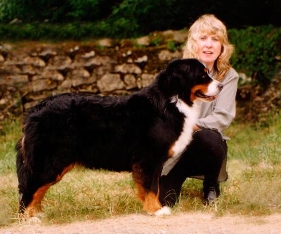 Interview with Mrs. Helen Davenport-Willis • Nellsbern kennel