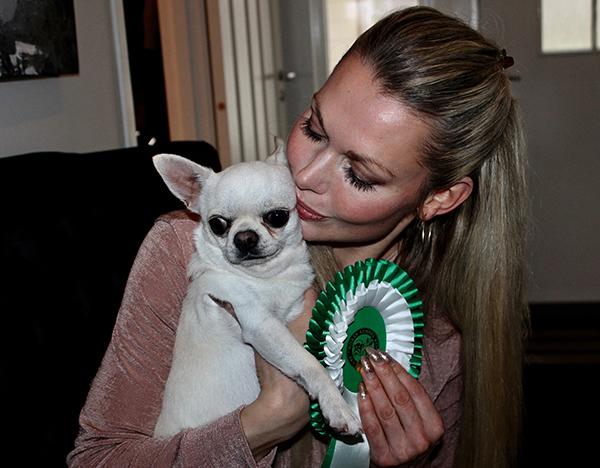 Life with Dogs  • Lene Kalleklev