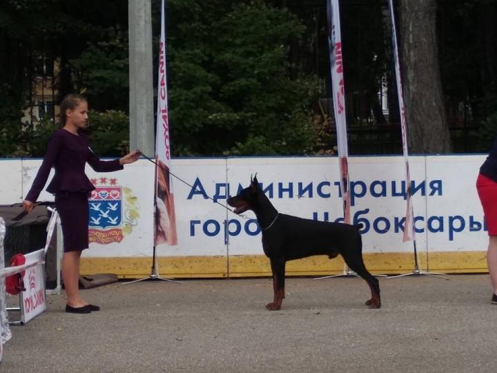 Eva Titova1