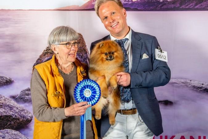 Life with Dogs • Dag Löken