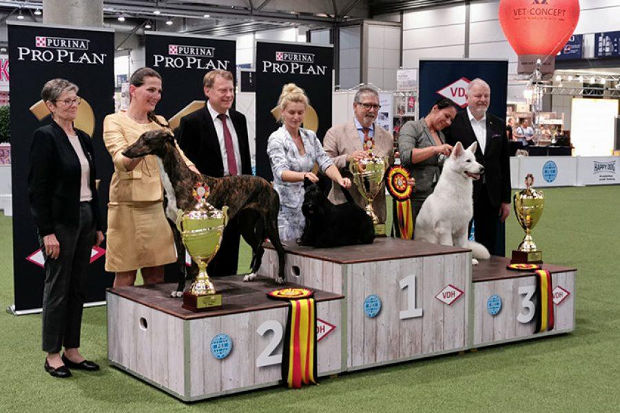 BIS German Winner Show – 25/8/2019