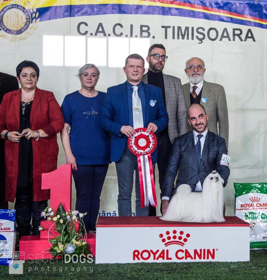 BIS at the IDS Timisoara • 2/2/2020
