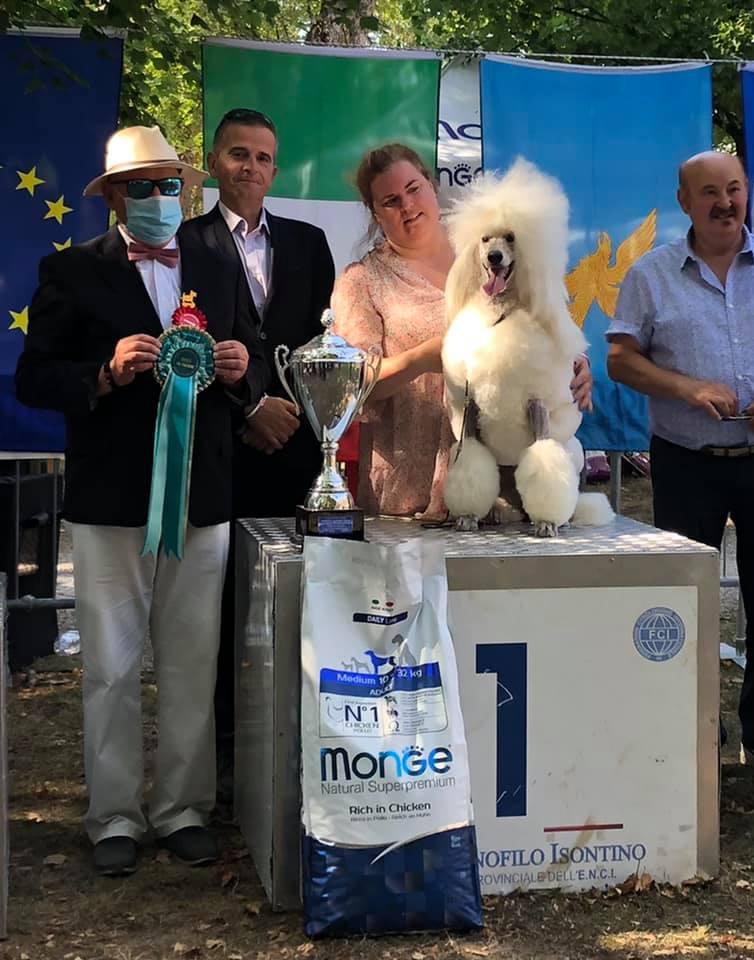 BIS at the IDS Gorizia  • 14/8/2021