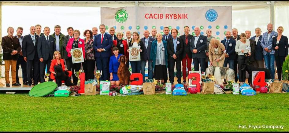 BIS at the IDS Rybnik • 29/8/2021